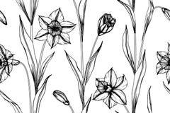 Fundo sem emenda do teste padrão de flor do narciso amarelo Imagens de Stock Royalty Free