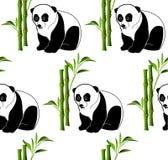 Fundo sem emenda do teste padrão do vetor da panda de bambu Imagens de Stock Royalty Free