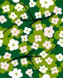 Fundo sem emenda floral Imagem de Stock