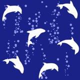 Fundo sem emenda na imagem de um golfinho Foto de Stock