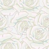 Fundo sem emenda Rosas brancas Foto de Stock