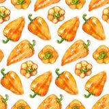 Fundo sem emenda vegetal da textura do teste padrão da pimenta búlgara do sino doce de amarelo alaranjado da aquarela Fotos de Stock Royalty Free