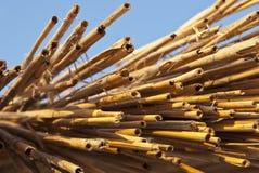 Fundo sob a forma de um grupo da palha e do bambu Fotos de Stock Royalty Free