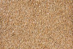 Fundo soletrado esmagado da textura nutrition bio Ingrediente de alimento natural imagem de stock