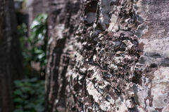 Fundo, textura da pedra natural Fotografia de Stock Royalty Free