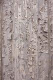 Fundo textured áspero, de madeira, rachado Fotos de Stock