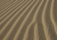 Fundo textured areia Luz natural Imagens de Stock Royalty Free
