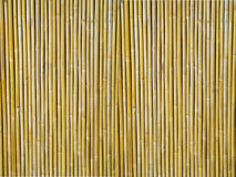 Fundo Textured bambu Fotografia de Stock