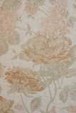 Fundo Textured com grandes testes padrões de flor Fotos de Stock Royalty Free