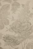 Fundo Textured com grandes testes padrões de flor Imagens de Stock