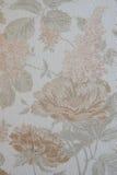 Fundo Textured com grandes testes padrões de flor Foto de Stock