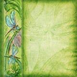 Fundo Textured com libélulas Foto de Stock