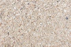 Fundo Textured da areia Imagens de Stock Royalty Free