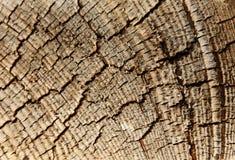 Fundo textured madeira Fotos de Stock Royalty Free