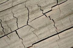 Fundo Textured madeira Imagens de Stock