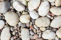 Fundo textured pedras do mar Foto de Stock