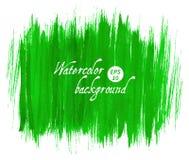 Fundo tirado da aquarela do vetor mão abstrata verde Imagem de Stock