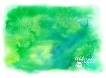 Fundo tirado da aquarela do vetor mão abstrata verde Fotografia de Stock Royalty Free