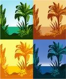 Fundo tropical ilustração do vetor