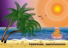 Fundo tropical Fotos de Stock Royalty Free