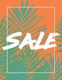 Fundo tropical bonito da silhueta da folha da palmeira Fotos de Stock Royalty Free
