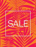 Fundo tropical bonito da silhueta da folha da palmeira Ilustração do vetor Foto de Stock Royalty Free