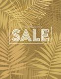 Fundo tropical bonito da silhueta da folha da palmeira Ilustração do vetor Fotografia de Stock Royalty Free