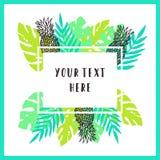 Fundo tropical bonito e brilhante do quadro Foto de Stock Royalty Free
