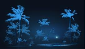 Fundo tropical com as palmeiras em nigh, ilustração do vetor ilustração do vetor