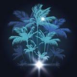 Fundo tropical com as palmeiras na noite, ilustração do vetor ilustração stock