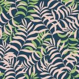 Fundo tropical com folhas de palmeira Fotos de Stock