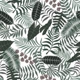 Fundo tropical com folhas de palmeira Teste padrão floral sem emenda S Fotos de Stock