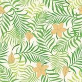 Fundo tropical com folhas de palmeira Teste padrão floral sem emenda S Fotografia de Stock