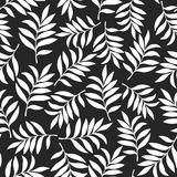 Fundo tropical com folhas de palmeira Teste padrão floral sem emenda S Imagem de Stock