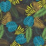 Fundo tropical com folhas de palmeira Teste padrão floral sem emenda S Imagens de Stock Royalty Free