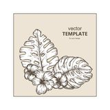 Fundo tropical com folhas e as flores tropicais exotic ilustração stock