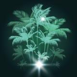Fundo tropical com palmeiras, ilustração do vetor ilustração do vetor