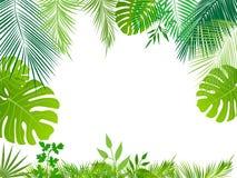 Fundo tropical da selva do vetor Fotos de Stock Royalty Free