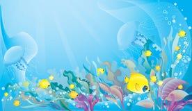 Fundo tropical do mar Fotos de Stock Royalty Free
