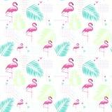 Fundo tropical do ornamento do verão do flamingo sem emenda do teste padrão ilustração royalty free