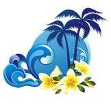 Fundo tropical do verão com flores Imagem de Stock