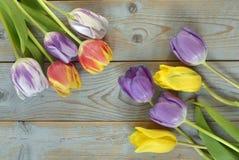 Fundo vazio de madeira cinzento do espaço da cópia com tulipas coloridas Fotos de Stock