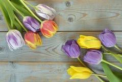 Fundo vazio de madeira cinzento do espaço da cópia com tulipas coloridas Fotos de Stock Royalty Free
