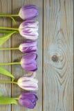Fundo vazio de madeira cinzento do espaço da cópia com tulipas roxas Imagem de Stock Royalty Free