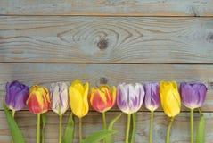 Fundo vazio de madeira cinzento preto do espaço da cópia com tulipas coloridas Fotografia de Stock