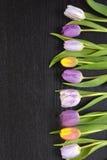 Fundo vazio de madeira do espaço da cópia do wenge preto com tulipas coloridas Foto de Stock