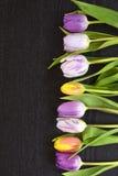 Fundo vazio de madeira do espaço da cópia do wenge preto com tulipas coloridas Foto de Stock Royalty Free