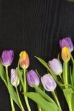 Fundo vazio de madeira do espaço da cópia do wenge preto com tulipas coloridas Imagens de Stock Royalty Free