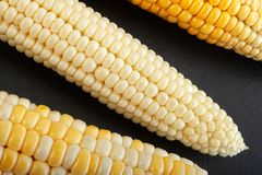 Fundo vegatable do close up do milho imagem de stock