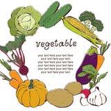 Fundo vegetal com frame de texto Imagens de Stock Royalty Free